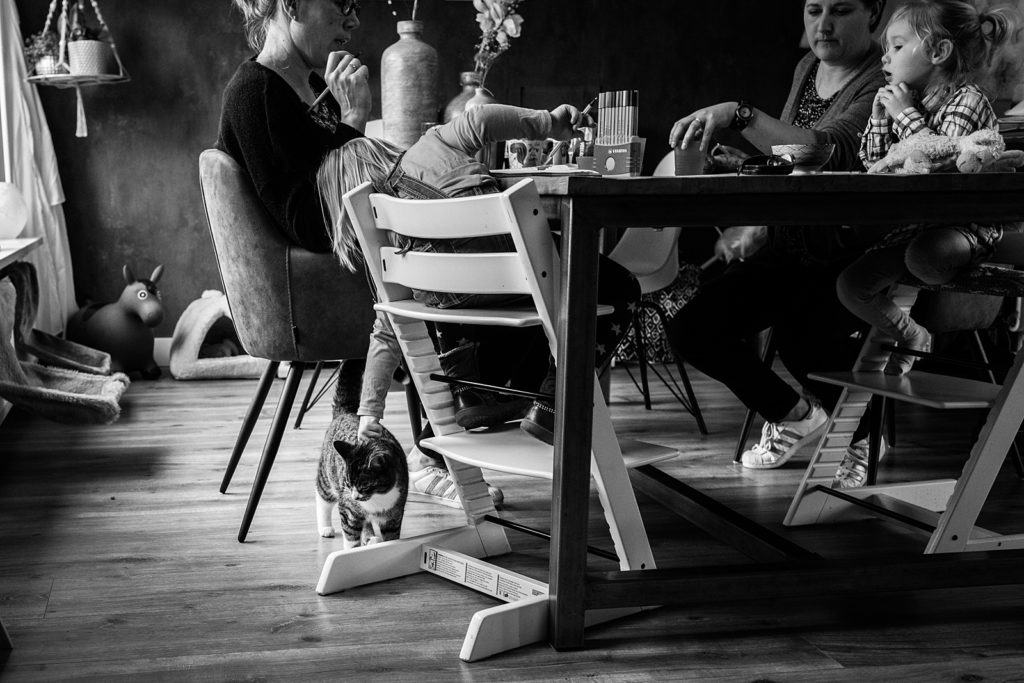de kat aaien onder tafel