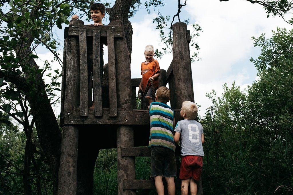 kinderen klimmen in boomhut